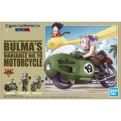 Bulma's Variable no.19...